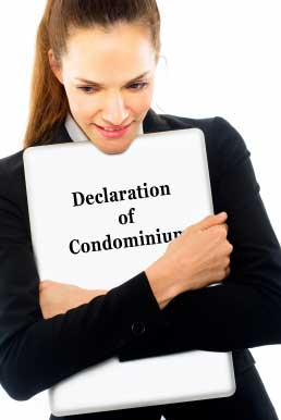 declaration-of-condominium-bylaws
